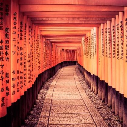 Sequenza di torii alFushimi Inari Taisha diKyoto